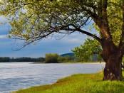 river-71177_640