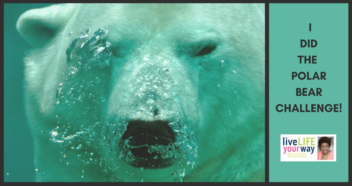 2018 Made Me Polar Bear Dive!